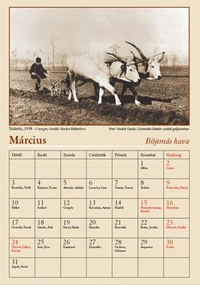 naptár 2008 március Lapozgató    naptár 2008 március
